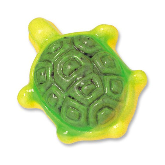 TORTUGAS RELL.